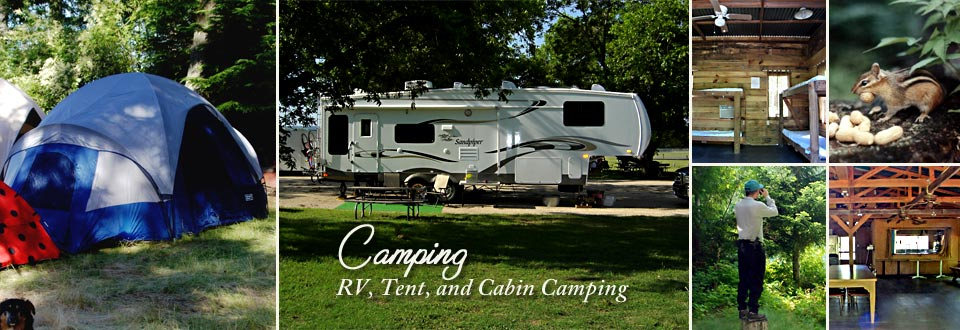 Camping in the Big Thicket of Southeast Texas